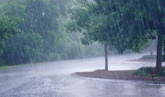 Es wird regnerisch in Deutschland. (Foto)