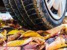 Herbstzeit für Autofahrer