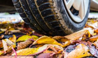 Herbst-Tipp: Fahrsicherheit beginnt bei den Reifen (Foto)