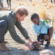 Meghan Markles Mann solidarisiert sich in Afrika mit Klima-Greta (Foto)