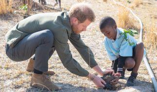 Im Rahmen seines derzeitigen Südafrika-Trips, befindet sich Prinz Harry derzeit in Botswana. (Foto)