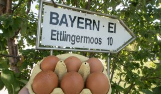 """""""Bayer-Ei""""-Chef wurde wegen dem Tod eines Rentners durch Salmonellen angeklagt. (Foto)"""