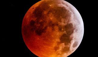 Trotz Blutmond! Im Oktober gibt's keine Mondfinsternis am Himmel zu sehen. (Foto)