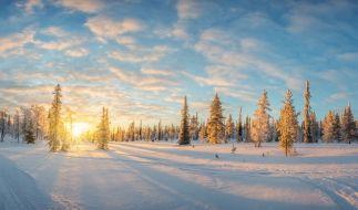 Die Chancen auf weiße Weihnachten stehen schlecht. (Foto)