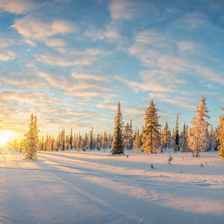 Nass-trübe Prognose! Fällt der Winter in diesem Jahr ins Wasser? (Foto)