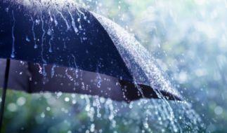 Tief Thilo bringt Regen und Sturm nach Deutschland. (Foto)