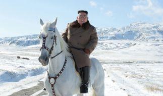 Was will uns Kim Jong Un mit diesen Bildern sagen? (Foto)