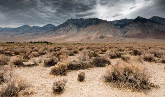 Die Polizei Nevadas hat in der Wüste nahe Las Vegas eine in Beton gegossene Frauenleiche gefunden. (Symbolbild) (Foto)