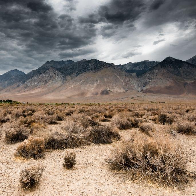 Meth-Abhängiger hat Leiche in Beton gegossen und in der Wüste vergraben (Foto)