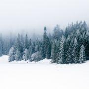Sonne ohne Kraft! Droht uns jetzt arktische Kälte? (Foto)