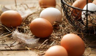 """Die Firma """"Geflügelhof Strauß GBR"""" ruft Eier wegen Verdacht auf Salmonellen zurück. (Foto)"""