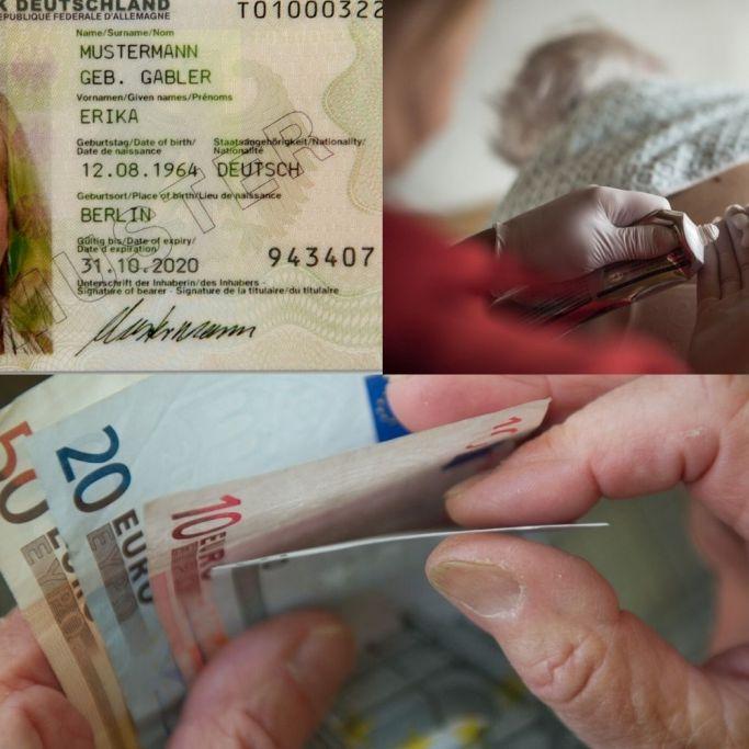 Pflege, Ausweis und Co.! DAS sind die neuen Gesetze ab 1. November (Foto)