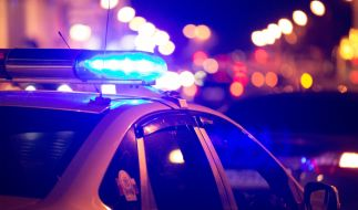 Ein Mann wurde für den öffentlichen Sex mit einer Olaf-Puppe festgenommen. (Foto)