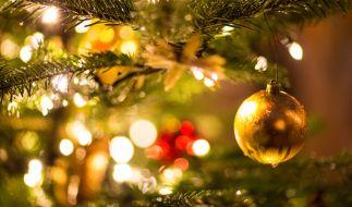 Wo und wann öffnen die schönsten Weihnachtsmärkte in Deutschland? (Foto)