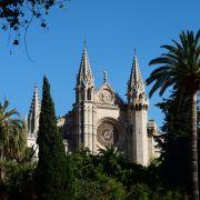Palme erschlägt Frau (41) vor Kathedrale in Palma (Foto)