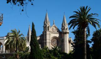 In der Nähe der Kathedrale von Palma wurde eine Frau von einer Palme erschlagen. (Foto)