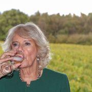 Prost! Camilla, Herzogin von Cornwall, trinkt im Oktober 2019 ein Glas Wein bei einer Weinprobe im Bolney Wine Estate.
