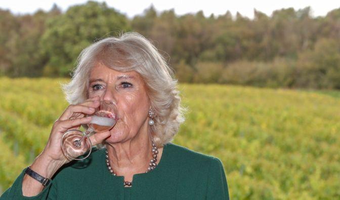 Prost! Camilla, Herzogin von Cornwall, trinkt im Oktober 2019 ein Glas Wein bei einer Weinprobe im Bolney Wine Estate. (Foto)