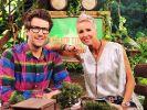 Welche Kandidaten dürfen Sonja Zietlow und Daniel Hartwich im Dschungelcamp begrüßen? (Foto)