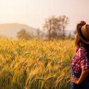 Bauernregeln zur Wettervorhersage gibt es seit Jahrhunderten. (Foto)