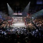 "Brock Lesnar bezwingt Rey Mysterio, ""The Fiend"" widersteht Daniel Bryan (Foto)"