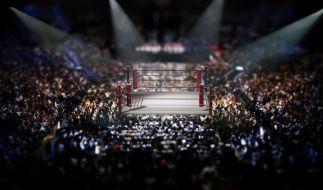 Wrestling-Fans dürfen sich auf die Survivor Series freuen. (Foto)