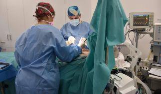 Arielle Rippegather bekommt die Brüste gemacht (Foto)