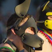 Verkleidet als Ziege! Fetisch-Paar missbraucht 15-Jährigen (Foto)