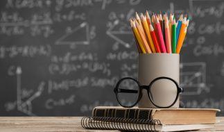 In einer Hamburger Schule hat ein Lehrer Schüler mit Hochfrequenz-Tönen gequält. (Foto)