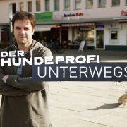 """Wiederholung von """"Demenz - Wenn der Mensch im Kopf verloren geht"""" online und im TV (Foto)"""