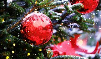 Können wir doch auf ein weißes Weihnachtsfest hoffen? (Foto)