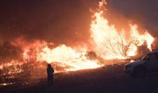 Seit Oktober 2019 wüten Buschbrände in Australien. Immer neue Brandherde lassen die Feuerwehr in Australien nicht zur Ruhe kommen. (Foto)