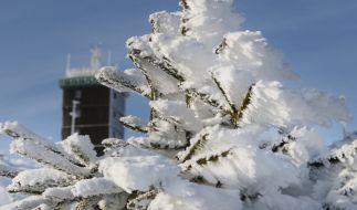 Der Start ins neue Jahr 2020 gestaltet sich der Wettervorhersage zufolge neblig-trüb. (Foto)