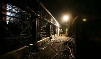 Bei einem Feuer im Krefelder Zoo sind in der Silvesternacht alle Tiere im Affenhaus verendet. (Foto)