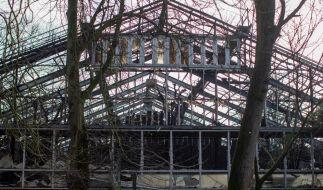 Das Affenhaus im Krefelder Zoo ist komplett abgebrannt. (Foto)