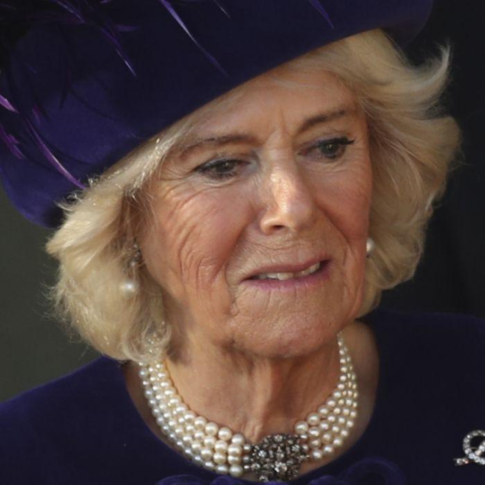 Prinz Charles' Fremdflirt machte sie wahnsinnig (Foto)