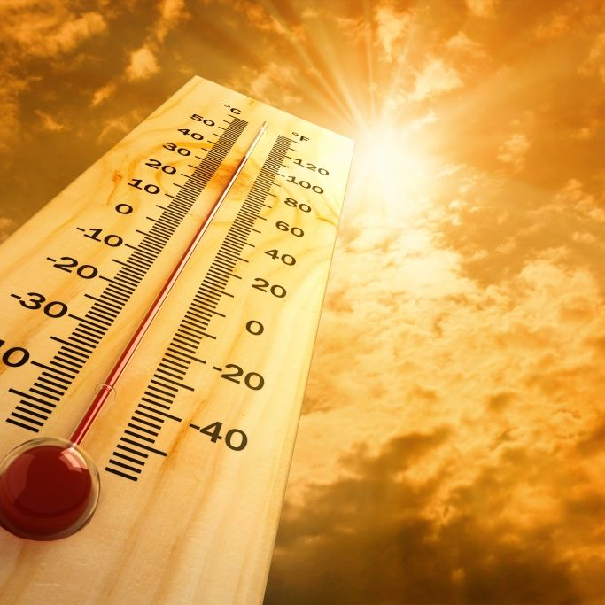 Rekordhitze kommt! Experten warnen vor tödlicher Gefahr (Foto)