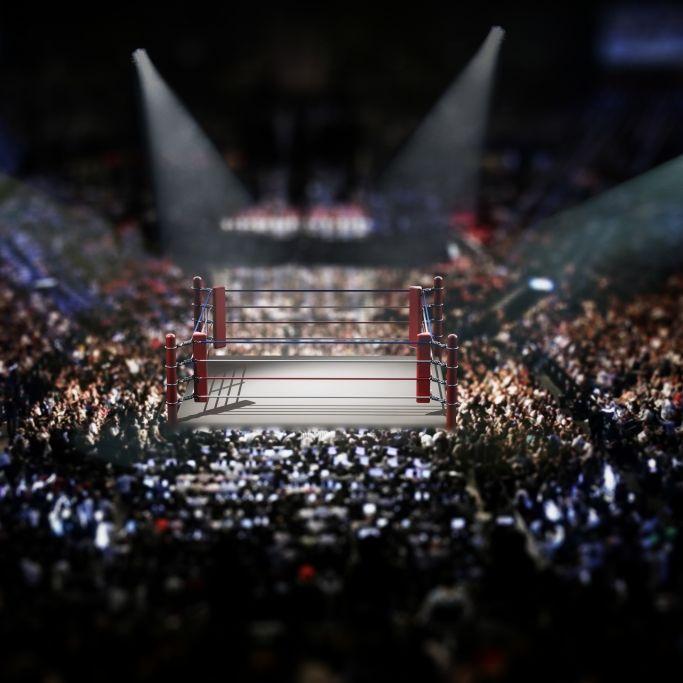 Wrestling-Fans in Trauer! Bret-Hart-TrainerNagasaki und La Parka gestorben (Foto)