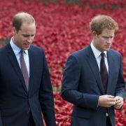 Herzogin Meghan rausgemobbt? Prinz William spricht Klartext (Foto)