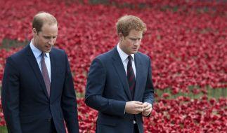 Wie zerrüttet ist das Verhältnis zwischen Prinz William und seinem jüngeren Bruder Prinz Harry? (Foto)