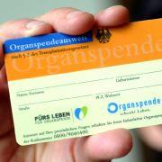 Bundestag beschließt moderate Reform der Organspende (Foto)