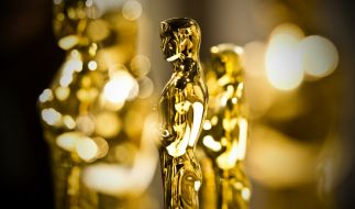 Die Oscars werden am 9. Februar zum 92. Mal in Los Angeles verliehen. (Foto)