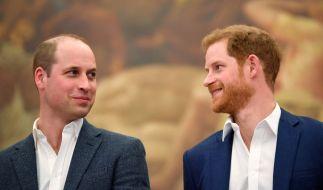 Prinz William und Prinz Harry sollen sich versöhnt haben. (Foto)