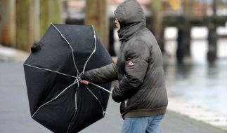 Die letzte Januar-Woche 2020 wird von Regen, Sturm und Gewittern eingeläutet. (Foto)