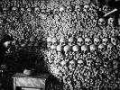 DIESE tödlichen Seuchen hätten beinahe die Menschheit ausgelöscht