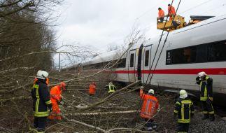 Der Deutsche Wetterdienst warnt vor Unwetter mit Orkanböen, die auch den Bahnverkehr in Mitleidenschaft ziehen könnten. (Foto)
