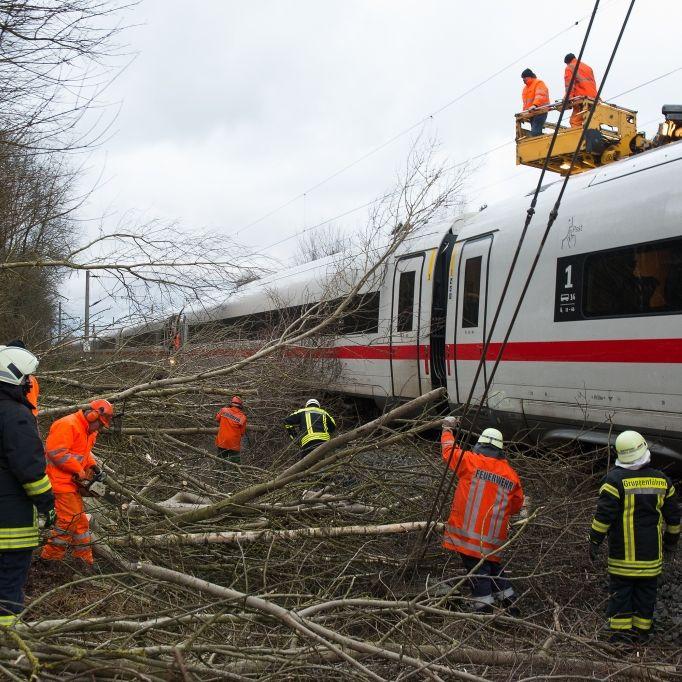 """Mega-Sturm im Anmarsch! Verwüstet Orkan """"Sabine"""" das Land? (Foto)"""