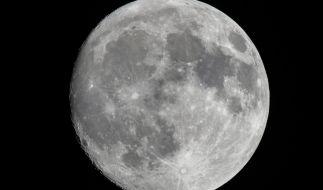 Im Februar erstrahlt der Vollmond als Supermond vom Himmel. (Foto)