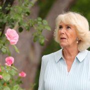DARUM wollte sie Prinz Charles NIE heiraten (Foto)