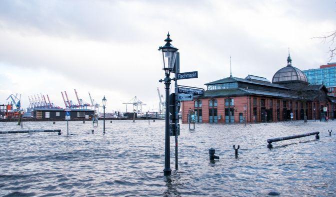 Hamburg: Der Fischmarkt mit der Fischauktionshalle steht während einer Sturmflut unter Wasser. (Foto)